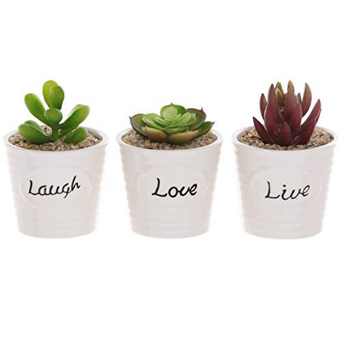 (Set of 3 White Ceramic Ribbed Design LIVE LAUGH LOVE Expression Succulent Plant Pot Containers - MyGift)