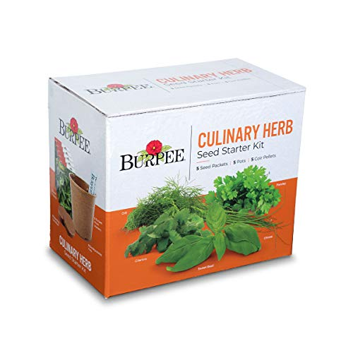 - Burpee Culinary Herb Starter Kit | Cilantro, Dill, Parsley, Sweet Basil & Chives | 5 Seed Packets, 5 Pots, 5 Coir Pellets & 5 Plant Markers