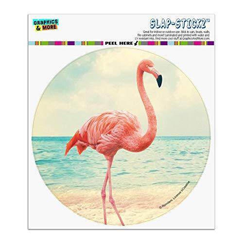 (Graphics and More Flamingo on Beach Starfish Retro Automotive Car Window Locker Circle Bumper Sticker)