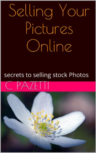 selling pictures online, tips on selling your stock photography, where and how (Selling With Pictures compare prices)