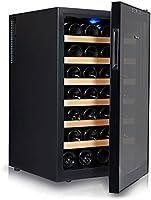 SHENXINCI Nevera para Vinos Nevera para Bebidas Refrigerador/Iluminación LED