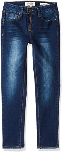 (Jessica Simpson Girls' Big Skinny Jean with Embroidery, Blue wash, 10)