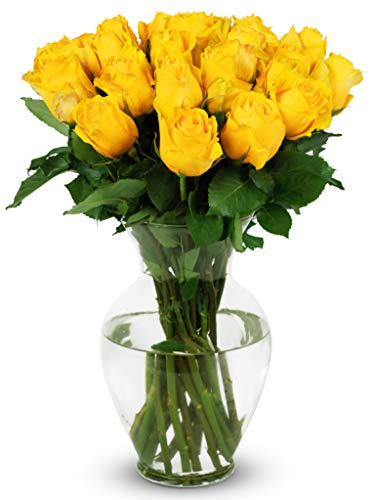 Benchmark Bouquets 2 Dozen Yellow Roses, With Vase...