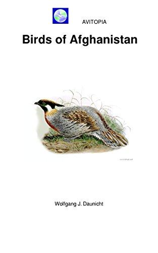 avitopia-birds-of-afghanistan