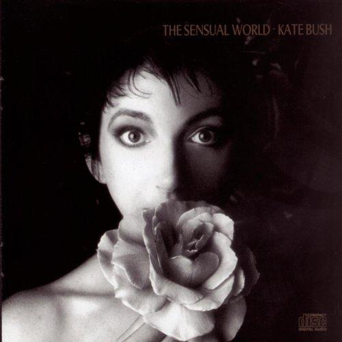 The Sensual World