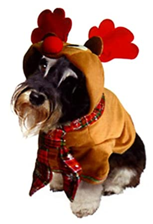Dogs \u0026 Co Christmas Fancy Dress Costumes for Dogs Reindeer Outfit, 12,inch/