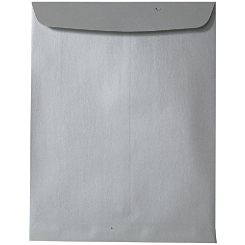 en End Catalog Metallic Envelopes - Silver Stardream - 100/Pack ()