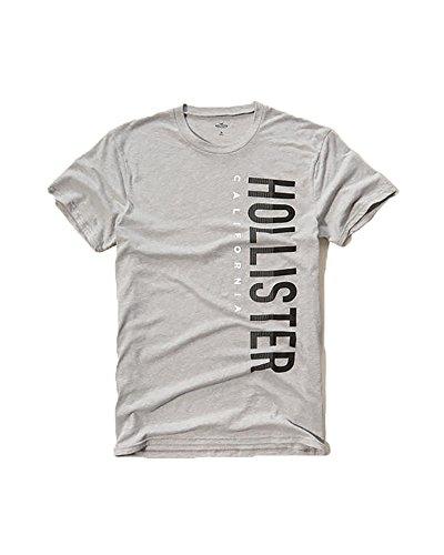 hollister-mens-graphic-logo-t-shirt-large-gray-1997
