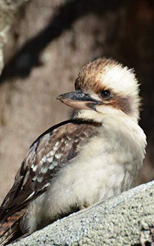 Notebook: Kookaburra Australian Birds Wildlife Australia Bird 5
