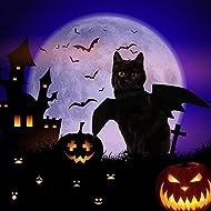 Ausein Halloween Pet Bat Wings Costume for Cat Dog, Cat Kitty Bat Wings Costume Dress up Cat Kitty for Halloween Festival– Black