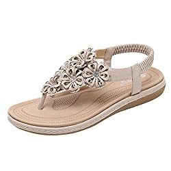 Wensy Spring And Summer Women S Fashion Elastic Crystal Floral Casual Shoes Flat Beach Shoes Roman Shoes Sandals Beige 40