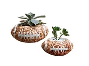 Creative pelota de rugby para niños Mini planta macetas, juego de 2