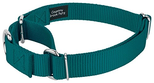 Image of Country Brook Petz   Martingale Heavyduty Nylon Dog Collar (Various Sizes & Colors) (Large, 1 Inch Wide, Teal)