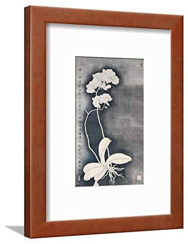 ArtEdge Orchids by Hsi-Tsun Chang, Brown matted Wall Art Framed Print, 12x9, Soft White -