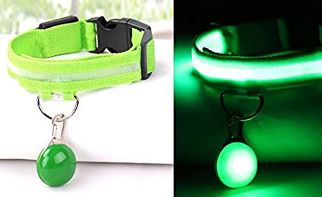 Fushenr Arnés de Mascotas Conjunto de Colgante LED Collar de Perro ...