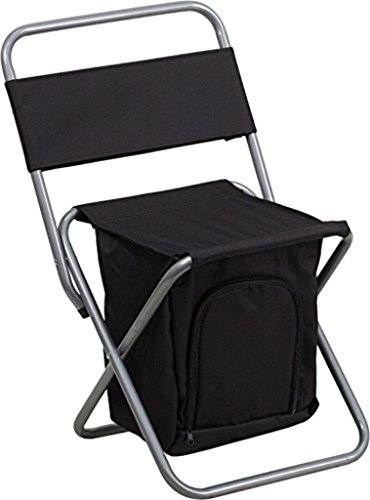 Flash Furniture Folding Camping Chair w/Insulated Storage in Black TY1262-BK-GG