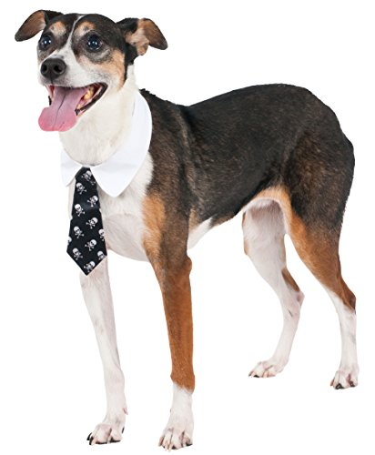 Pitbull Halloween Costumes (Skull Print Tie for Pet, Large/X-Large)