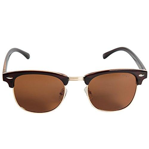 e5e356f5ed Dollger Classic Polarized Clubmaster Sunglasses Horn Rimmed Half Frame …