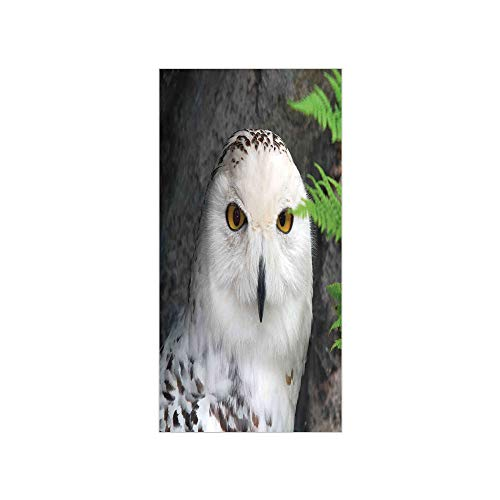 3D Decorative Film Privacy Window Film No Glue,Wizard,Pattern White Owl Themed Animal Green Leaves Amber Eyes Gift Witchcraft Print,White Green Black,for Home&Office