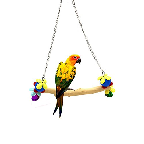Bird Swing for Parakeets Budgies Cockatiels Conures Small Medium Parrot,Hanging Cage Toy by Pokeman