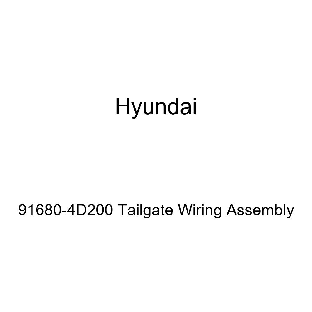 Genuine Hyundai 91680-4D200 Tailgate Wiring Assembly