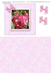 Color rosa adelfas en un marco de seda por Lynda Jones