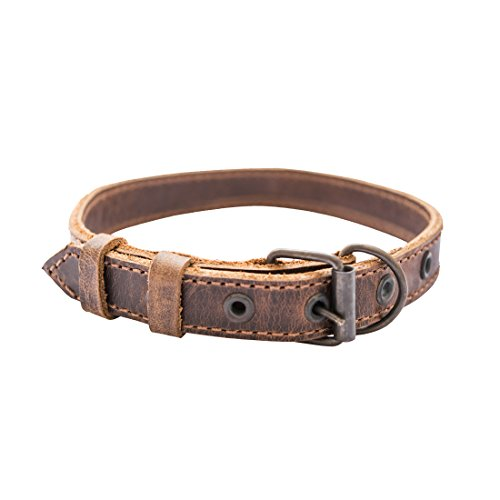 Slim Leather Dog Collar For Small Size Dog Handmade by Hide & Drink :: Bourbon Brown