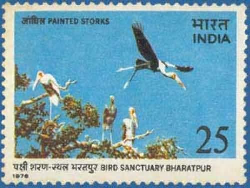 (Sams Shopping Bird Sanctuary Bharatpur - Painted Storks Keoladeo Ghana National Park Bird Sanctuary Painted Stork Mycteria leucocephala Wading Bird 25 P Stamp)