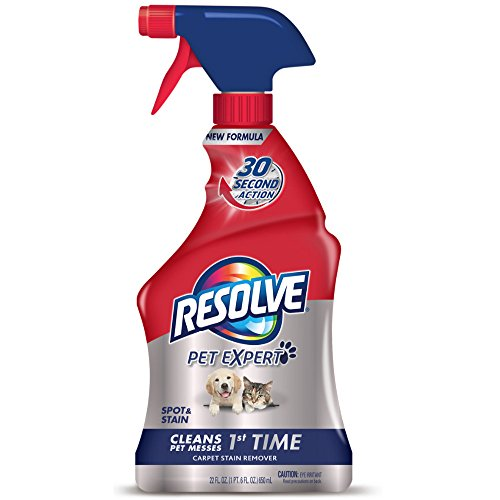 Resolve Pet Stain Remover Carpet Cleaner, 22 oz (Pack of (Carpet Cleaner Reviews)