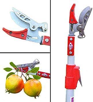 Cgoldenwall 1.2 m outils de jardin Coupe branche haute ...