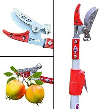 Cgoldenwall 1.2 m outils de jardin Coupe branche haute Branche ...