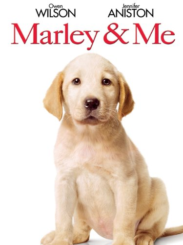 Marley & Me (Best Labrador In The World)