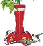 Perky-Pet Pinch-Waist Glass Hummingbird Feeder 203CP (8oz)