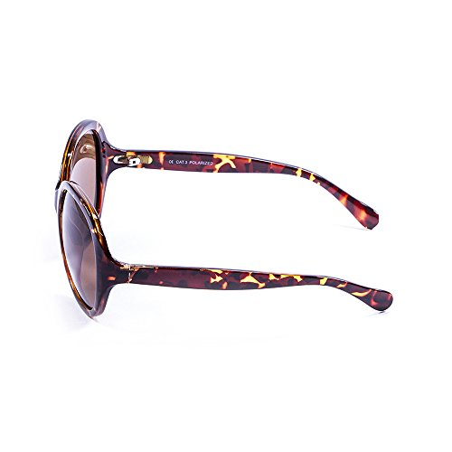 3 Soleil Femme Lenoir Eyewear Lunette LE15300 Marron de XwZPzHEq