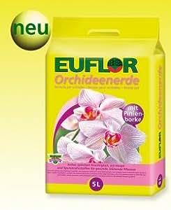 euflor orquídea Tierra