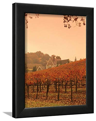 ArtEdge Silver Oak Cellars Winery and Vineyard, Alexander Valley, Mendocino County, California, USA by John Alves, Black Wall Art Framed Print, 12x9 -