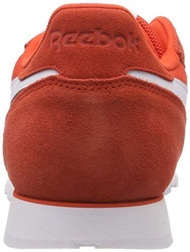 Zapatillas essentials Rojo Reebok white Cl carotene 0 Mu Para R Hombre Gimnasia De 1qtzAq