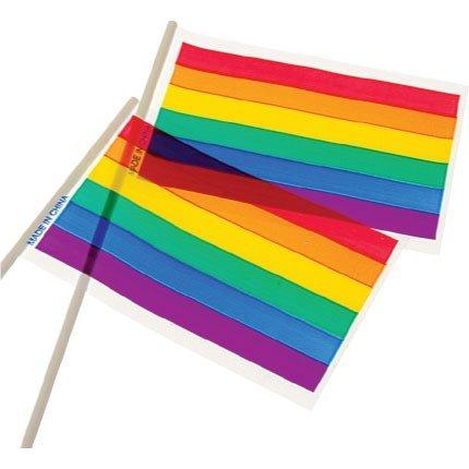 3 Dozen (36) RAINBOW FLAGS - 4