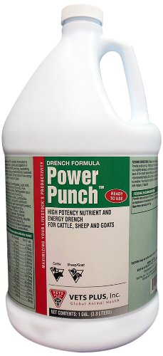 Vet's Plus Power Punch Drench Gallon Horse Supplement by Vet's Plus