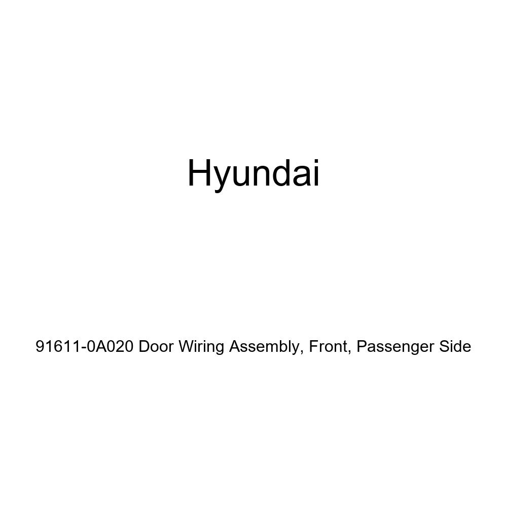 Front Genuine Hyundai 91611-0A020 Door Wiring Assembly Passenger Side