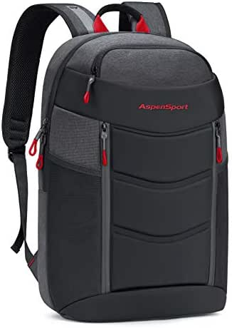 ASPENSPORT Lightweight Laptop Backpack TSA-Friendly Slim Stylish Travel College School Computer Bag fit 17 Inch Notebook Water Repellent for Men & Women Dark Grey/Red