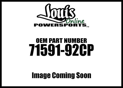 Twin Power Chr Rt Turn Signal Switch 71591-92Cp New ()