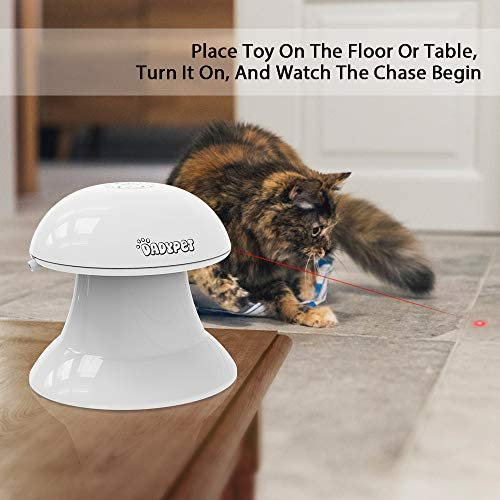 DADYPET Cat Laser Toy, 2 in 1 Automatic Non-Handheld Cat Chaser Toy and Interactive Feather Toy, Auto Rotating Light Cat Chaser Toy for Cats and Dogs 10