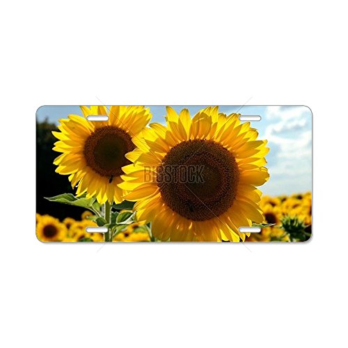 CafePress Sunflowers flowers Aluminum License