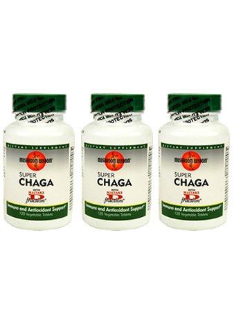 Супер Чага гриб Дополнение Веганские таблетки - 3 бутылок - 120 таблеток в каждой - 90 день питания - Лекарственные Грибы Приложение - Натуральное Исцеление