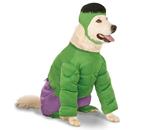 Pitbull Halloween Costumes (Marvel Universe The Incredible Hulk Big Dog Boutique, XX-Large)