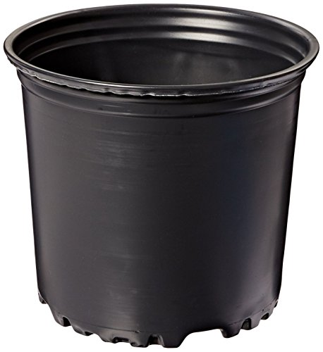 Viagrow 1 Gal. plastic Nursery Pots (3.78 Liters) 20-Pack by Viagrow