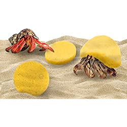 3 pcs. Hermit Crabs' Sponge - Moisture Cocoon That Keeps Crabs Moist and Hydrated - Prevents Accidental Drowning and Suffocation in Water Dish - Maintain Crabitat Humidity Levels - Pet-Safe