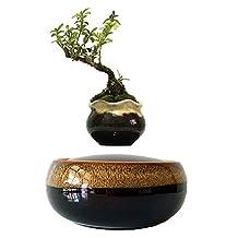 High-tech Magnetic Levitating Air bonsai Floating Bonsai Layer Garden Pots Fashion Gifts (ceramic pot-2)