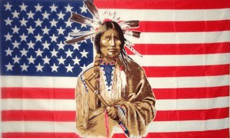 3'x5' AMERICAN INDIAN FLAG, america banner us usa